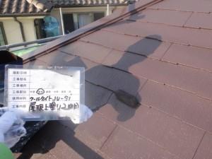5屋根上塗り2回目