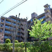夙川 (4)